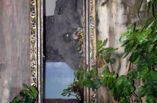 Bali 2013 643_1024