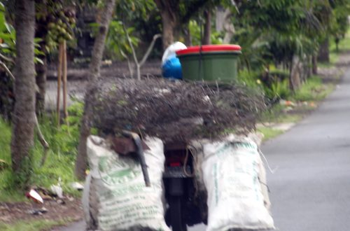 Bali 2013 179_1024