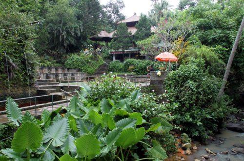 Bali 2013 908_1024