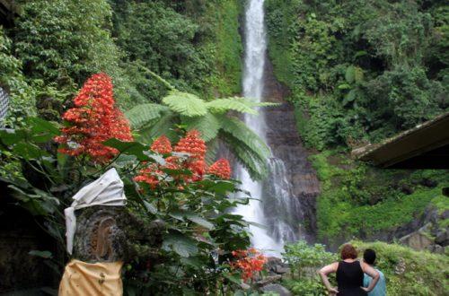 Bali 2013 947_1024